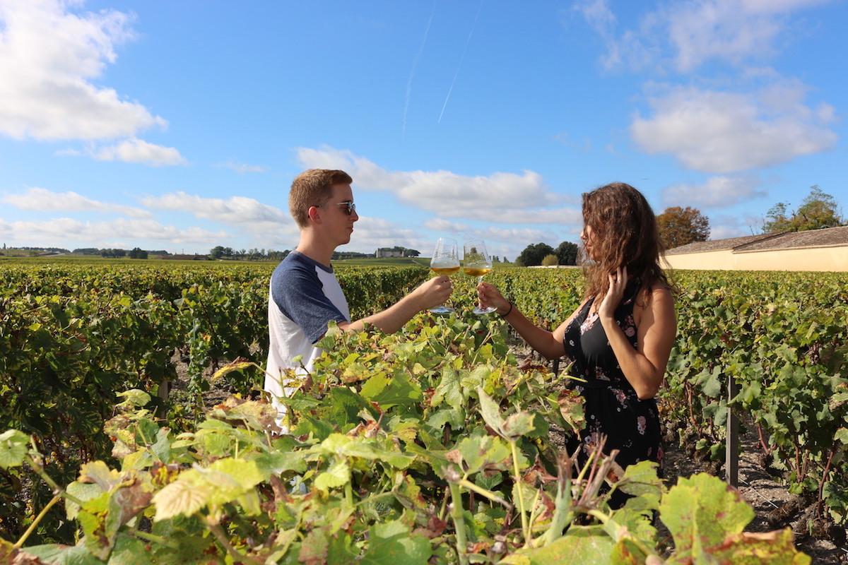 Dans les vignes de Bordeaux
